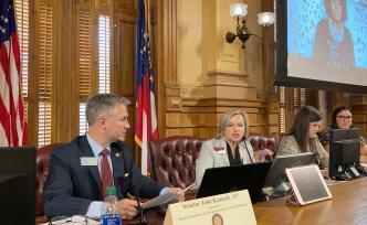 Georgia redistricting hearing